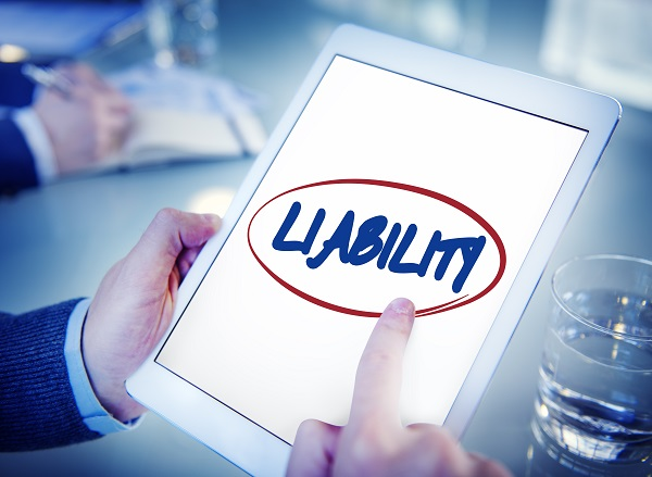 Details of the Minnesota Revised Limited Liability Act